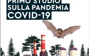Studio-antropologia-lockdown-pandemia-covid-19
